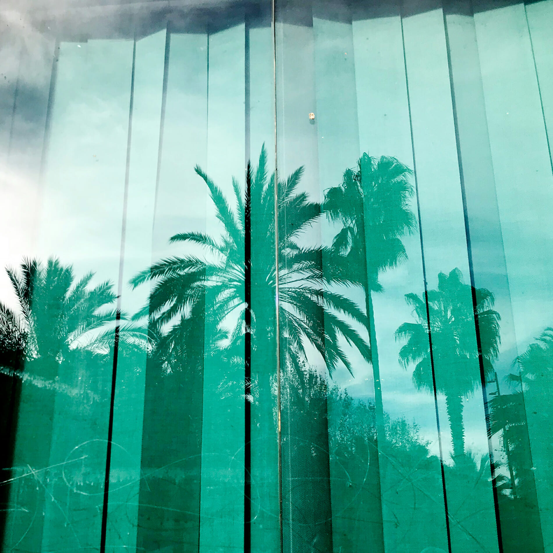 palm tres reflection Barcelona