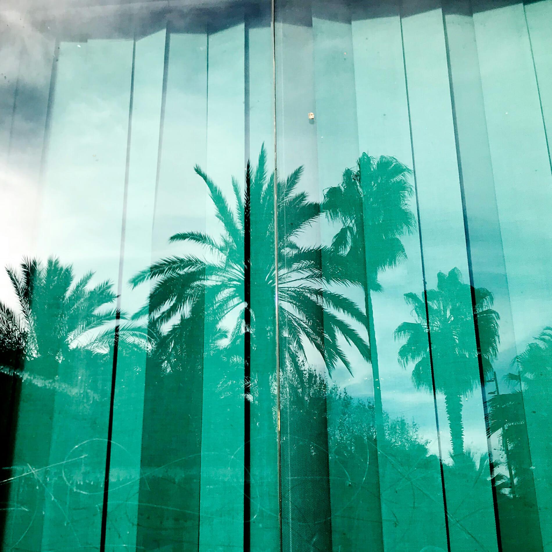 palm tres reflection Barcelona