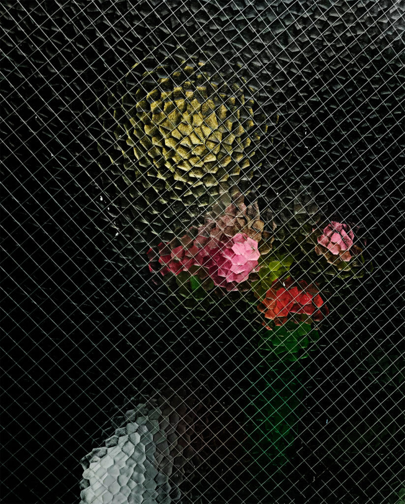 Flowers and chair behind safety glass.