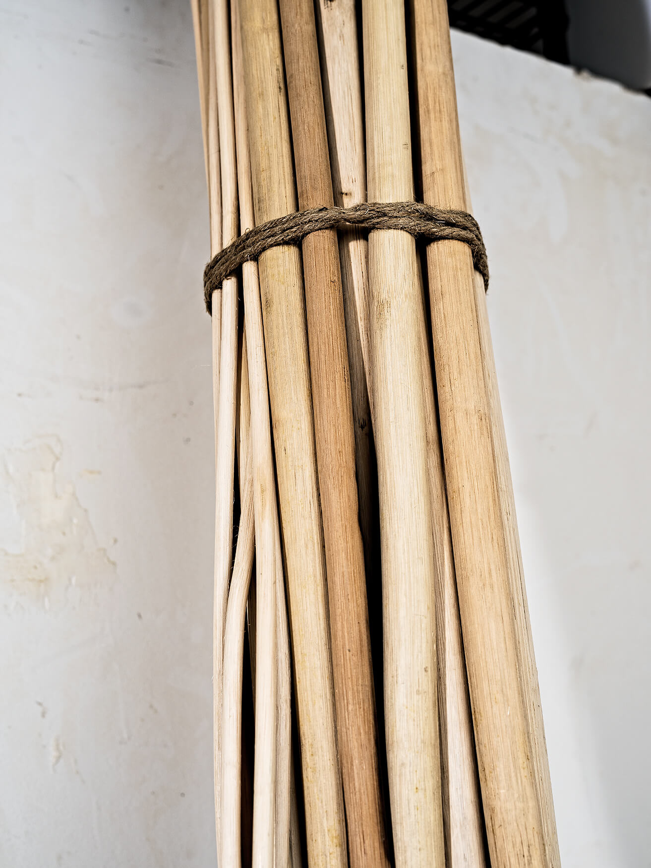 Pieces of Rattan
