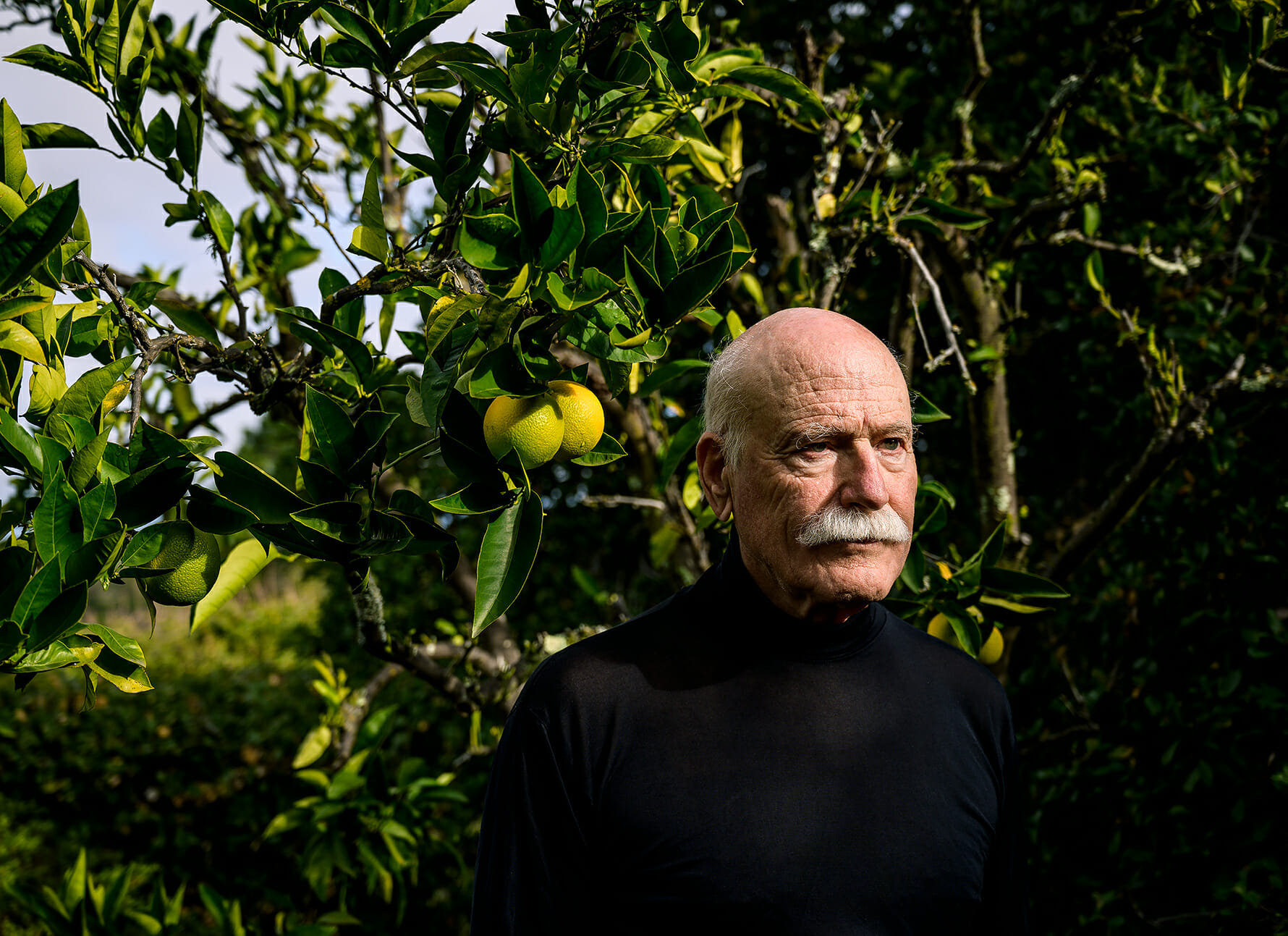 Portrait of author Tobias Wolff in his backyard