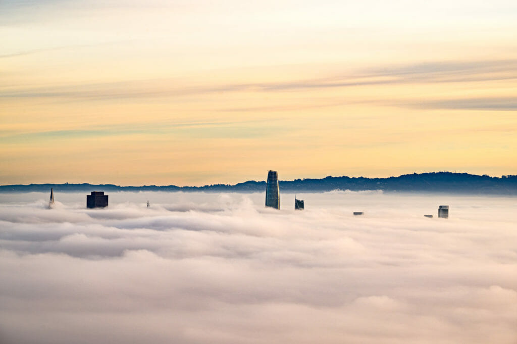 Skyscrapers in San Francisco peaking through the morning fog